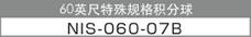 60英尺特殊规格积分球 NIS-060-07B